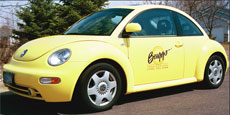 Buggs Pest Control's Logo